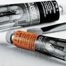 Colori ad olio, Olio Maimeri Classico 20ml