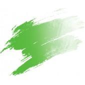 16 Verde permanente - Acquarello Pebeo Watercolor mezzo godet