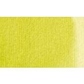 323 Verde giallastro - Acquarello Maimeri Venezia 15ml
