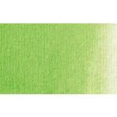 339 Verde permanente chiaro - Acquarello Maimeri Venezia 15ml