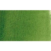 358 Verde vescica - Acquarello Maimeri Venezia 15ml