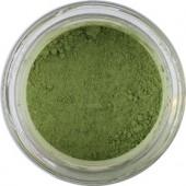 7010 Terra Verde per Affresco pigmenti in polvere per artisti, prezzi pigmenti online pigmenti pittura