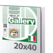 20x40 cm - Tela per pittura pronta - Pieraccini linea Gallery 20/561 - Made in Italy